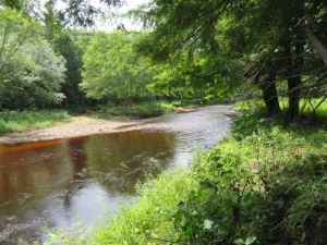 Magnificent Independence River <br>12.10 Acres<br>Greig , NY<br>$79,900.00<br>