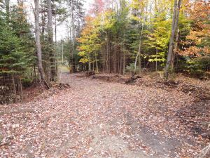 NEW, NEW, NEW, NEW  12.42 ACRES LEWIS, LEWIS COUNTY, NY<br> NEW!<br>12.42 Acres<br>West Leyden, NY<br>$44,900.00<br>